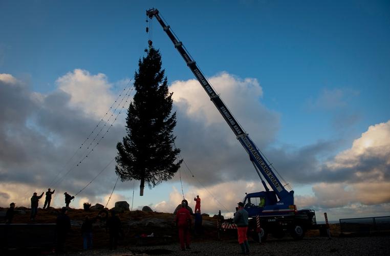 Dugnadslag setter opp julegran på Bogafjell utenfor Sandnes. (Foto: Kristian Jacobsen)